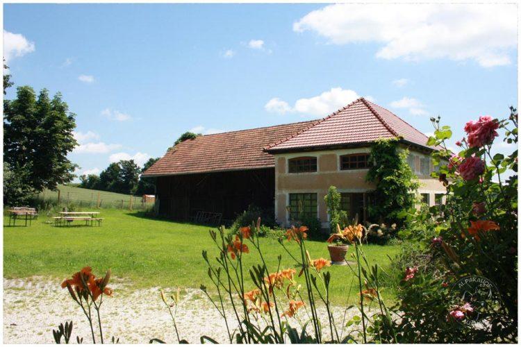 Alpakahof Ausham - Unser Hof