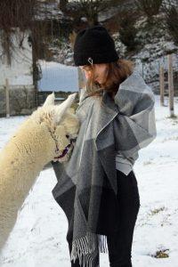 Stylisch und kuschelig - Alpakaprodukte